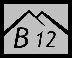 b12_stribrna